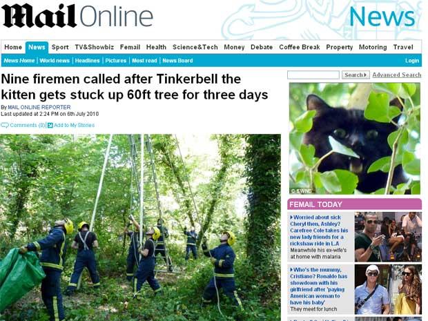 Tinkerbell ficou três dias no topo de uma árvore
