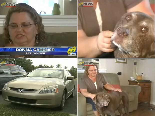 Donna Gardner com seu cão de estimação 'Max'.