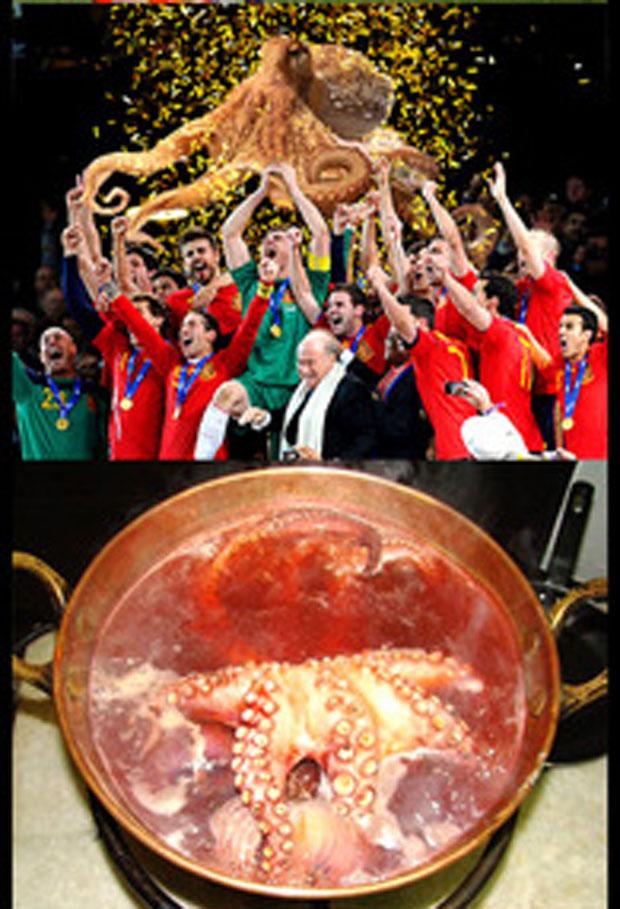 Após comemorar a previsão correta do resultado que favoreceu a Espanha, o polvo Paul acabou na panela.