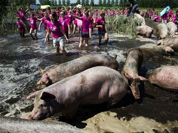 Por recorde, cerca de 200 pessoas tomaram banho de lama juntas.
