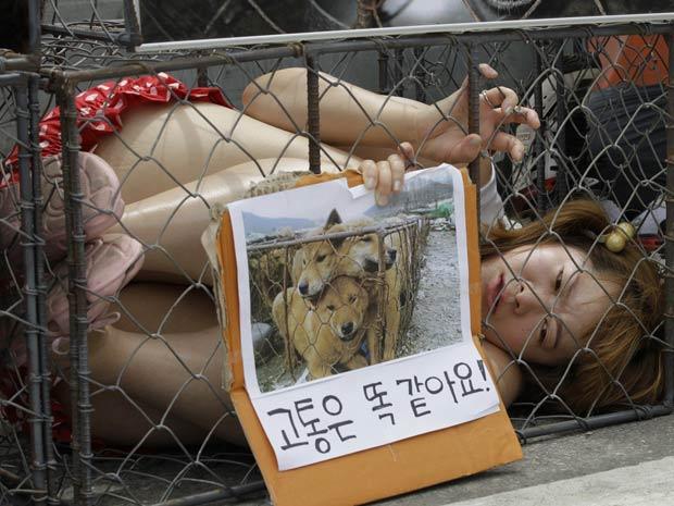 Protesto foi realizado neste domingo em Seul, na Coreia do Sul.