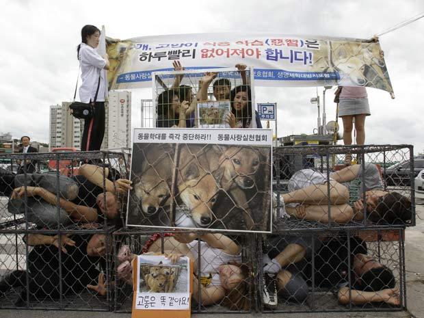 Ativistas ficaram enjaulados em protesto contra o consumo de carne de cachorro.