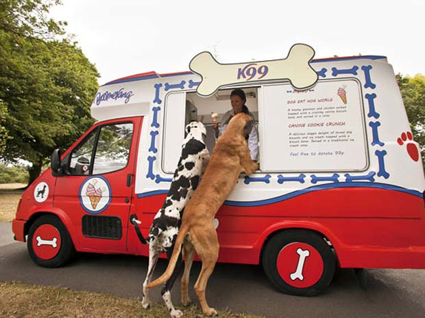 Empresa criou sorvetes para cães.
