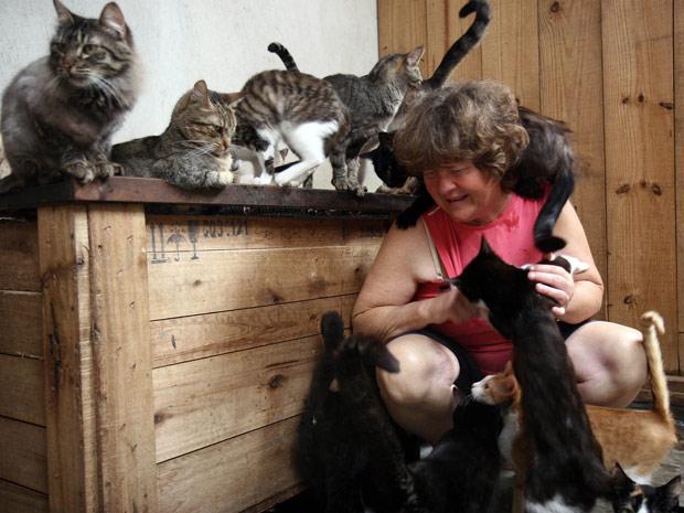 Rosélia Ponta Grossa cães e gatos