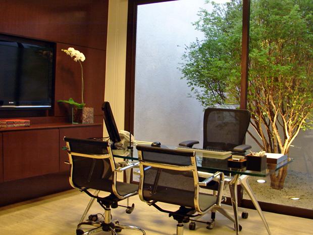 Consultório do cirurgião plástico Alan Landecker tem jaboticabeira e móveis de design