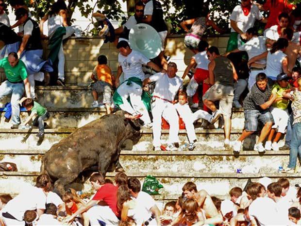 Touro invadiu a arquibancada durante tourada na Espanha