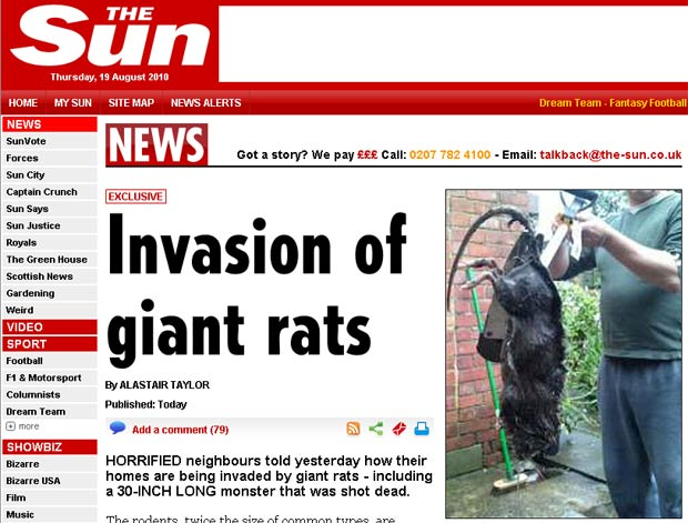 Rato de 76,2 centímetros capturado por Brandon Goddard. (Foto: Reprodução/The Sun)