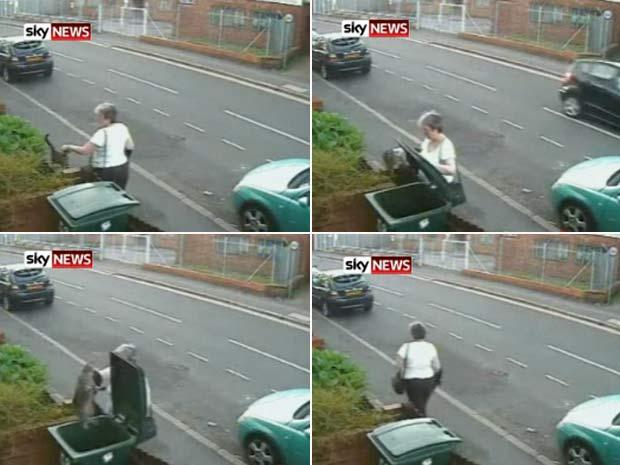 Mulher foi flagrada jogando gatinho em lixeira.