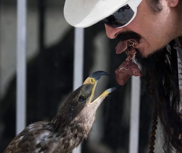 Apelidado de 'padrinho dos animais', o indiano Amir Rahbari mantém vários bichos de estimação em seu apartamento no norte de Teerã (Irã). Ele chega a alimentar sua águia chamada 'Parnaz' com a própria boca.