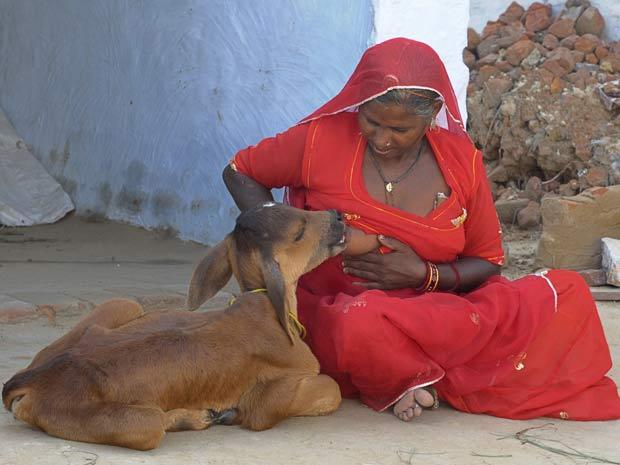 DISTRITO ANIMAL  E SUA ESPIRITUALIDADE - Página 3 2010-08-24t102735z_10080220