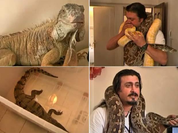 Apelidado de 'padrinho dos animais', Amir Rahbari mantém vários bichos em seu apartamento.