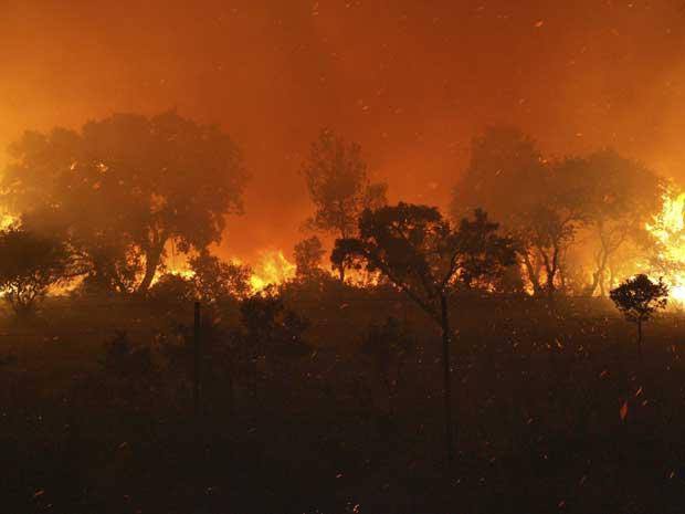 O incêndio já destruiu mais de 2.000 hectares de vegetação e ainda era considerado de grandes proporções no início da manhã.