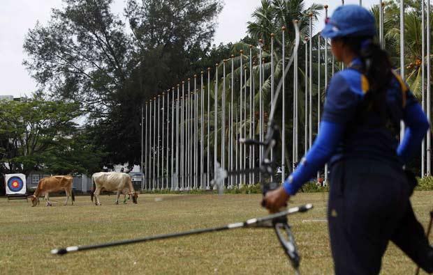 Vacas invadiram treino da equipe de arco e flecha do Sri Lanka.