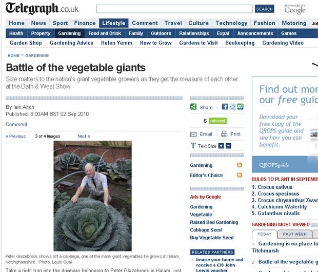 Peter Glazebrook com um repolho gigante cultivado em sua propriedade.