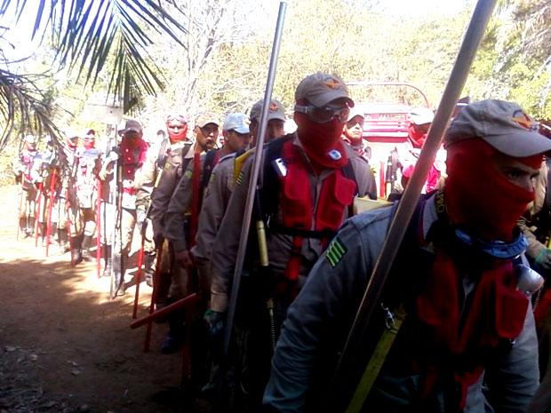 Bombeiros participam de treinamento para combate a incêndios florestais em Goiás