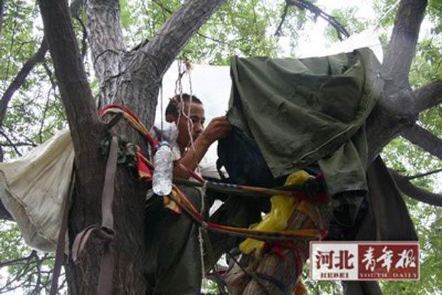 Chinês mora em uma árvore há cerca de 2 meses.