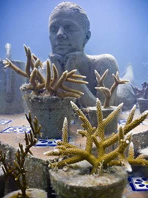 Museu coral matéria