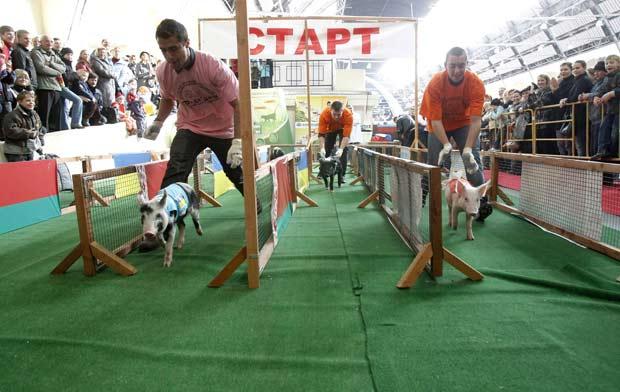 Competição contou com participantes de seis países.