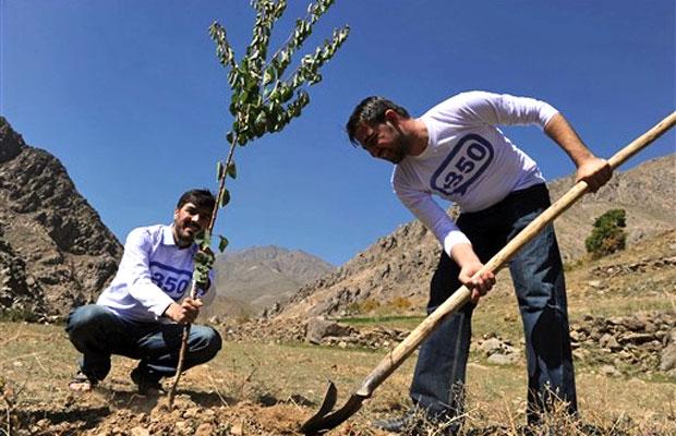 No afeganistão, jovens platam árvores para celebrar o dia internacional de soluções climáticas