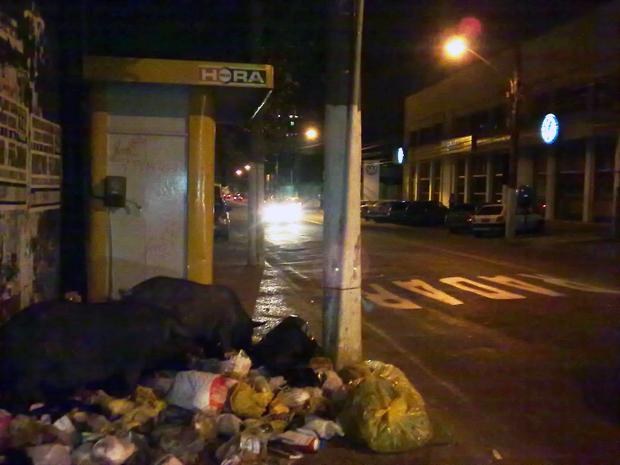 Este problema virou rotina na cidade: porcos soltos nas ruas. Todas as noites os porcos transitam livremente pelas ruas e reviram os lixo de bairros das zonas sul e norte da cidade, esta foto foi feita em frente ao nº 335, da Rua Noronha Torrezão.