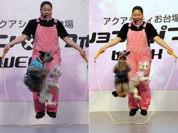 """Cães chamados """"Sumire"""" e """"Akebi"""" pulam corda com a treinadora Kayo Takeda durante um evento canino na última segunda-feira em Tóquio, no Japão."""