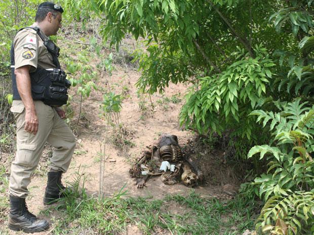 Polícia encontra ossada encontrada em Esmeraldas, na Grande BH