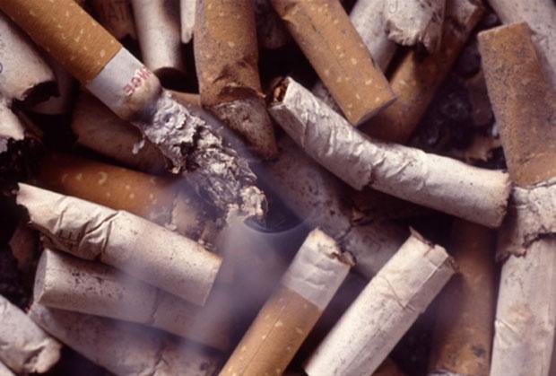 Restos de cigarro serão convertidos em adubo no interior de SP