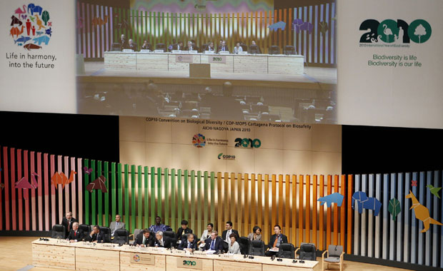 Delegações de 193 países estão reunidas em Nagoya, no Japão, para negociar acordos de proteção da diversidade biológica global (Foto: Yuriko Nakao / Reuters)