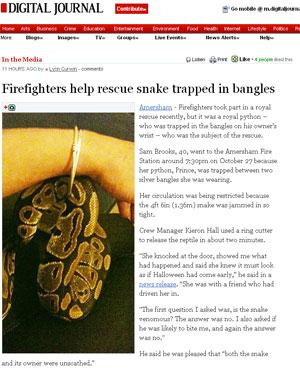 Cobra píton de estimação fica presa em pulseira de prata da dona.