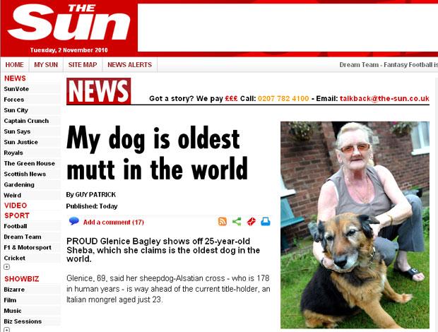 Cadela mais velha do mundo tem 25 anos
