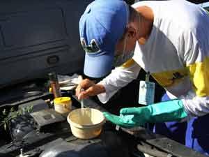 Agente faz vistoria em busca de focos do mosquito transmissor da dengue, em Curitiba