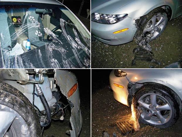 Na tentativa de pegar gato, cães danificaram veículo.