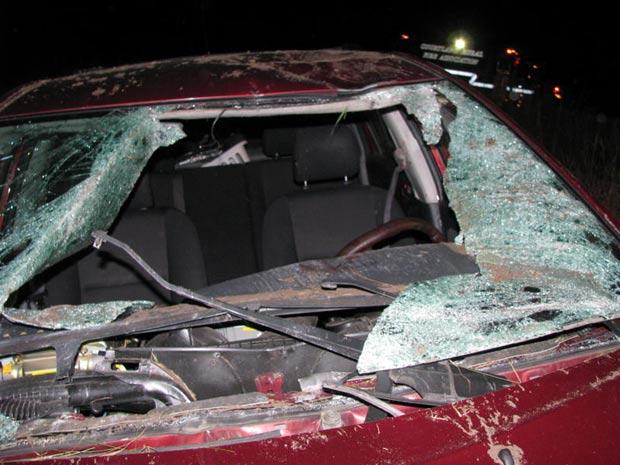 Parte da frente do carro da família Blake ficou destruída após um veado atravessar o parabrisa do carro após ser arremessado por outro veículo.