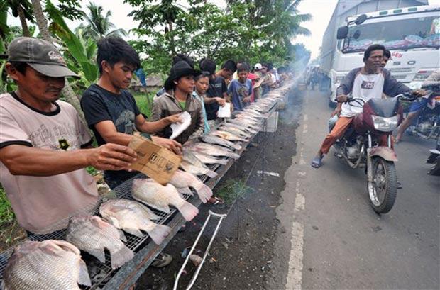 Centenas de peixes foram grelhados ao lado de rodovia.