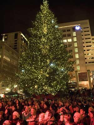 Inauguração de árvore de Natal em Portland é cerimônia tradicional.