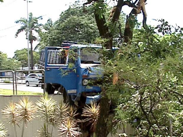 Caminhão desgovernado atropela uma pessoa e para em árvore na Avenida Antônio Carlos