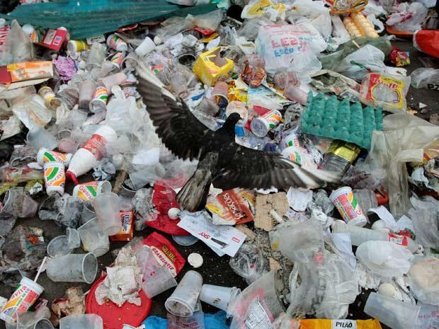 Os caminhões de limpeza pública voltaram a entrar na manhã desta segunda-feira (29) no Complexo de Favelas do Alemão, na Zona Norte do Rio.  Por todos os cantos da comunidade é possível ver montanhas de lixo. Segundo o prefeito do Rio, Eduardo Paes, os ca