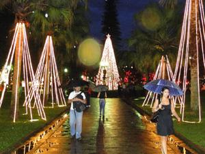 Árvores enfeitadas com microlâmpadas enfeitam e iluminam a Praça da Liberdade.