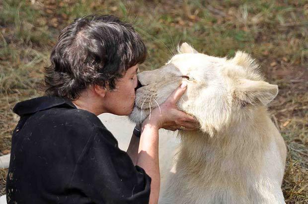 Traudi Riegger beija o leão branco 'Zuba'.