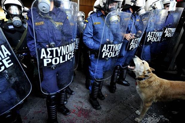 Cão marcou presença em todas as grandes manifestações nos dois últimos anos.