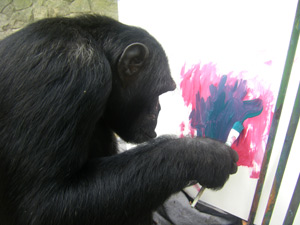 Quadro macaco Jimmy - Zoologico Niterói
