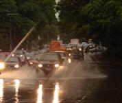 Avenida Brasil com Gabriel