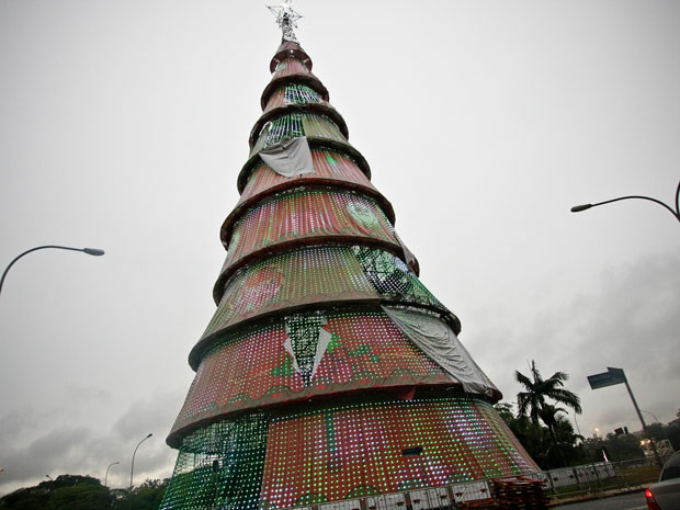 Árvore do Ibirapuera danificada por chuva