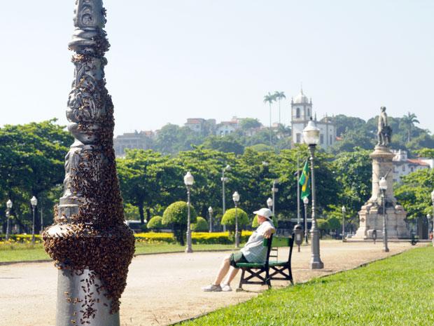 Um enxame de abelhas tomava conta de um poste da Praça Paris, na Glória, Zona Sul do Rio, na manhã desta terça-feira (21). Alguns frequentadores da praça ficaram assustados com o volume de abelhas no local.