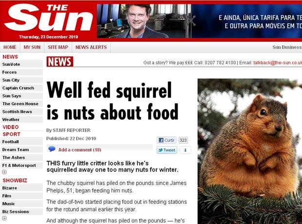 Esquilo obeso foi flagrado em Michigan.