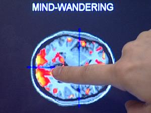 Técnica estresse cérebro 1