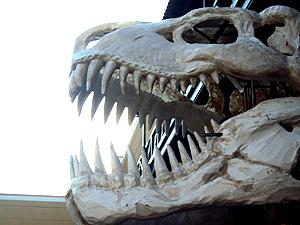 Desfile da União da Ilha terá fósseis de dinossauros e insetos gigantes