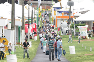 Produtores viajam três dias para visitar feira agropecuária. (Foto: Hugo Harada/Gazeta do Povo)