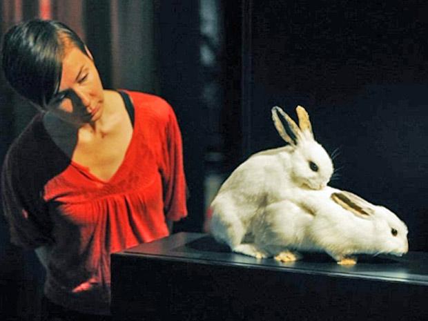 exposição Reino Unido sexo animais (Foto: Carls de Souza/ AFP)