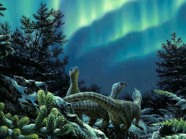 Florestas Antártida 3 (Foto: Peter Trusler / via BBC)